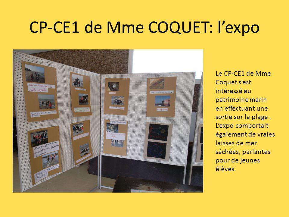 CP-CE1 de Mme COQUET: l'expo