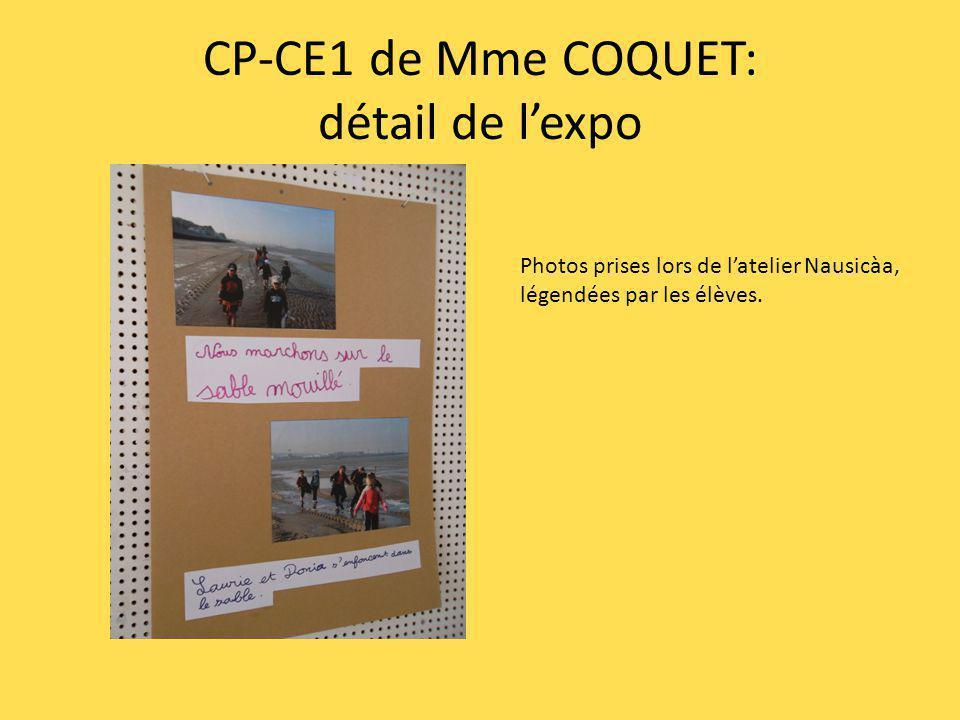 CP-CE1 de Mme COQUET: détail de l'expo
