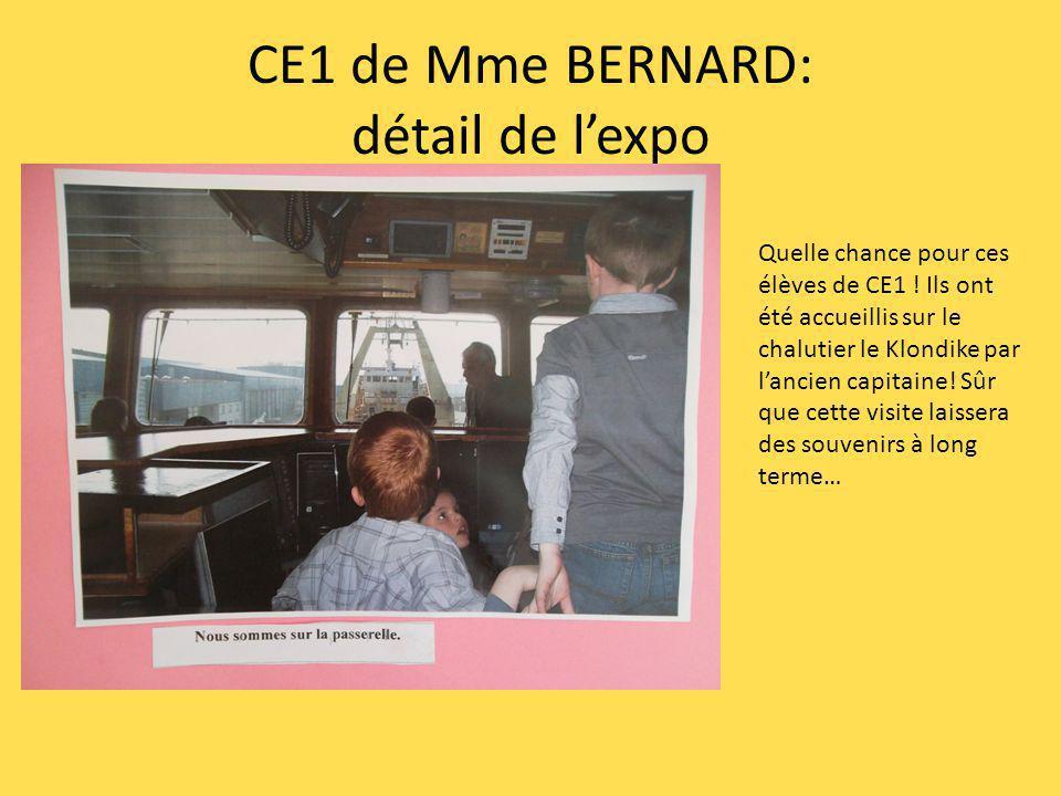 CE1 de Mme BERNARD: détail de l'expo