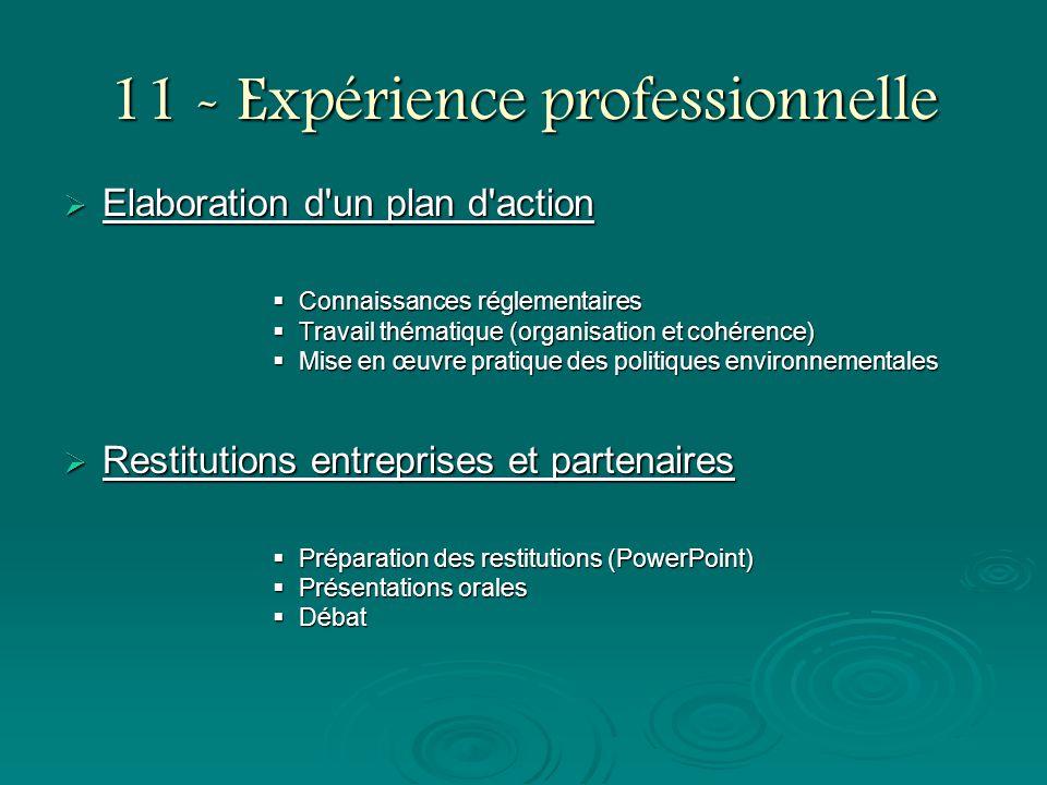 11 - Expérience professionnelle