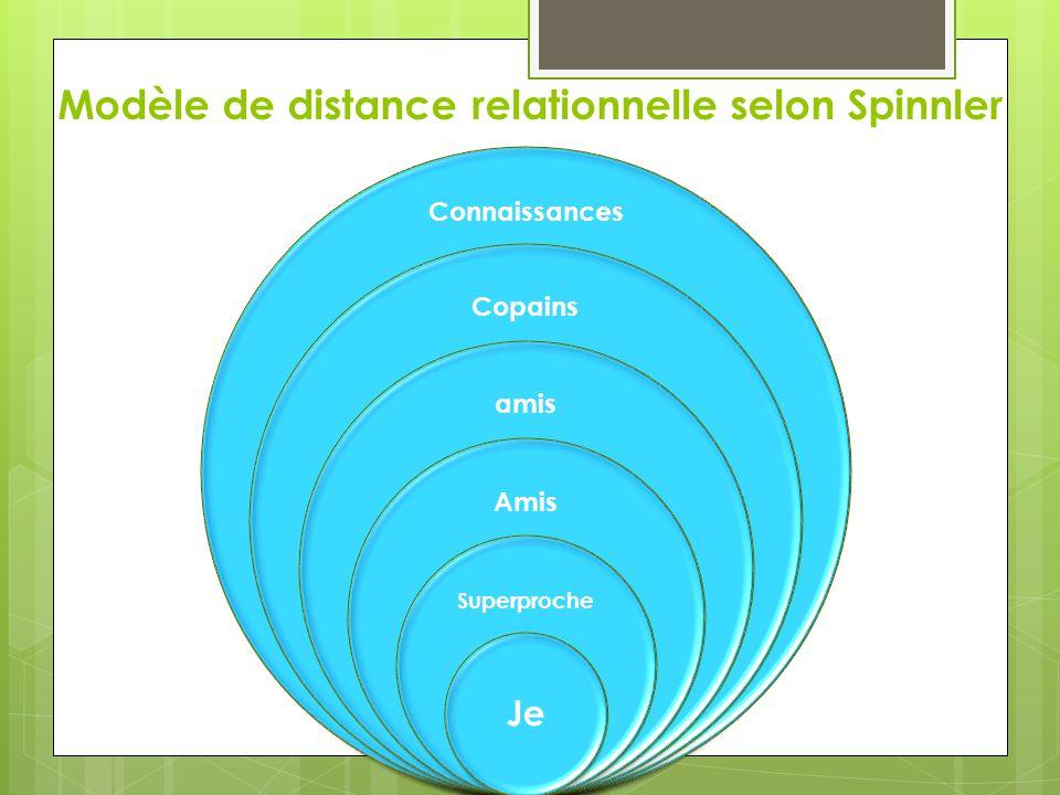 Modèle de distance relationnelle selon Spinnler