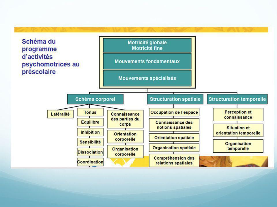 Voici un visuel de comment le développement des mouvements fondamentaux (habiletés motrices) contribuent au développement psychomoteur de l'enfant.
