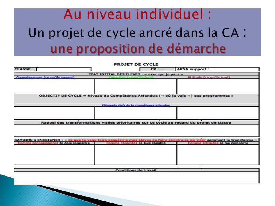 Au niveau individuel : Un projet de cycle ancré dans la CA : une proposition de démarche