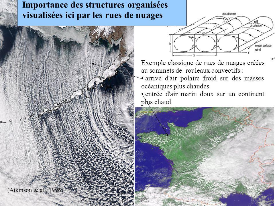 Importance des structures organisées visualisées ici par les rues de nuages