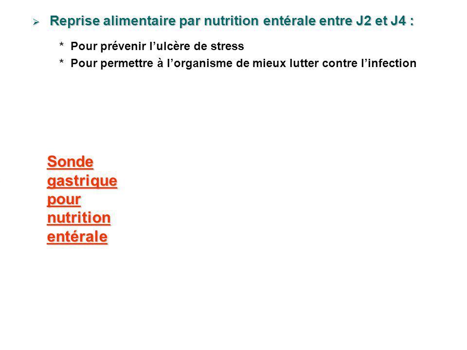 Sonde gastrique pour nutrition entérale