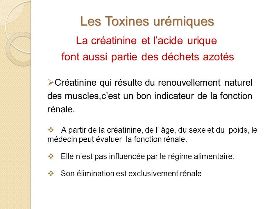 Les Toxines urémiques La créatinine et l'acide urique