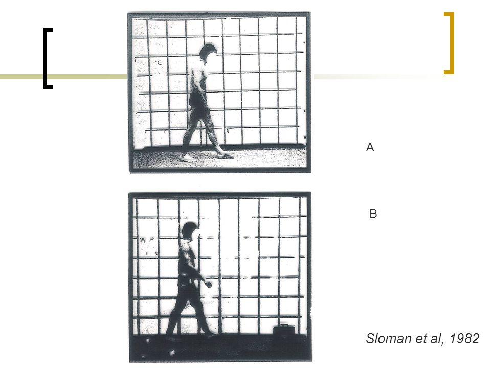 A B Sloman et al, 1982