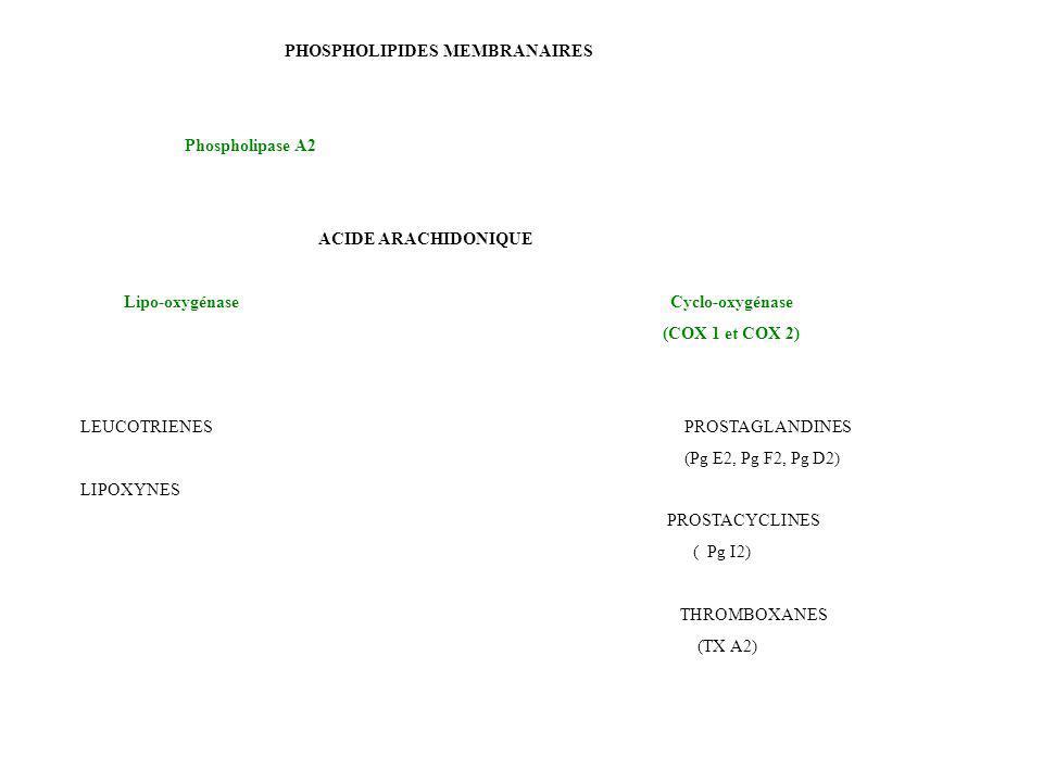 PHOSPHOLIPIDES MEMBRANAIRES
