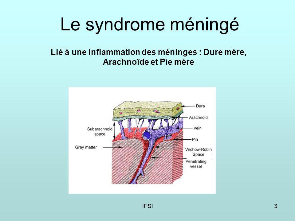 Le syndrome méningé Lié à une inflammation des méninges : Dure mère, Arachnoïde et Pie mère IFSI