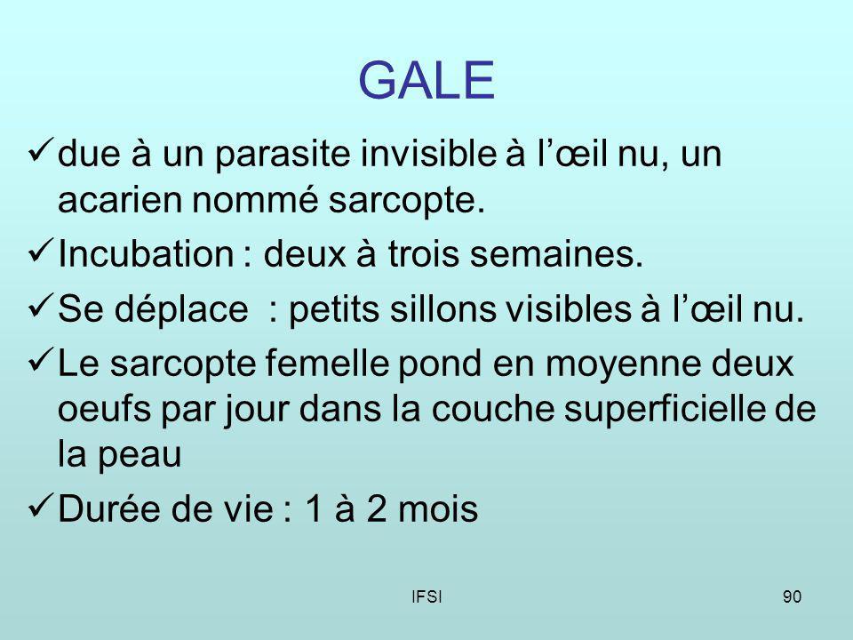 GALE due à un parasite invisible à l'œil nu, un acarien nommé sarcopte. Incubation : deux à trois semaines.
