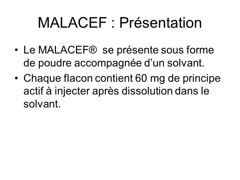 MALACEF : Présentation
