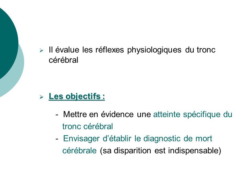 Il évalue les réflexes physiologiques du tronc cérébral