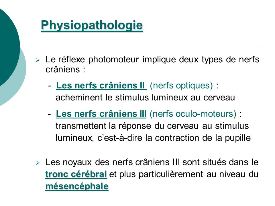 Physiopathologie Le réflexe photomoteur implique deux types de nerfs crâniens : - Les nerfs crâniens II (nerfs optiques) :