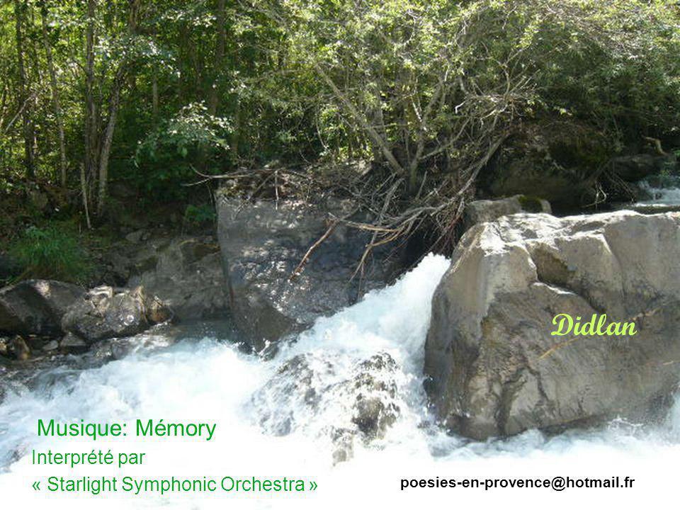 Didlan Musique: Mémory Interprété par