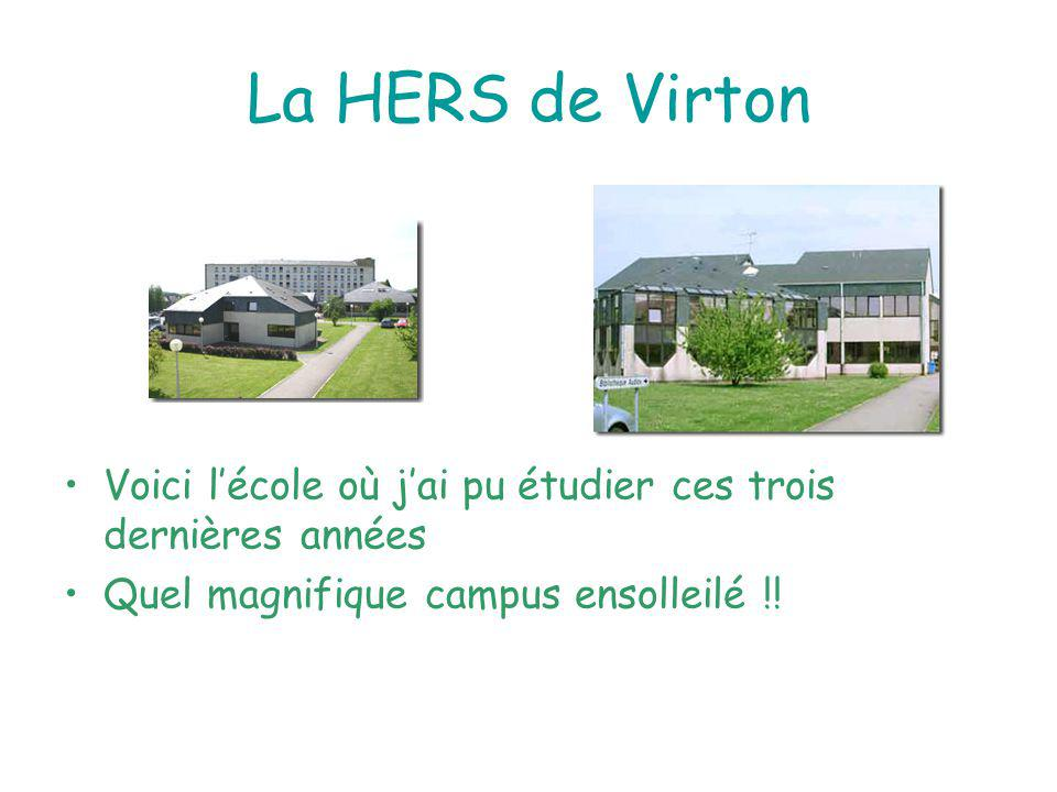 La HERS de Virton Voici l'école où j'ai pu étudier ces trois dernières années.