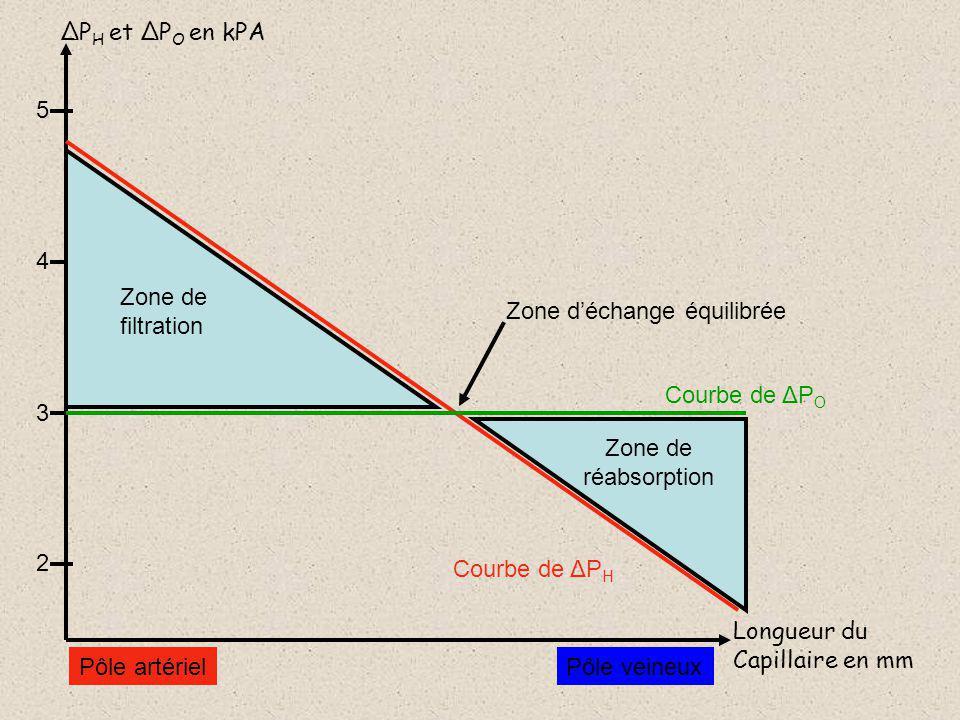ΔPH et ΔPO en kPA 5. 4. Zone de. filtration. Zone d'échange équilibrée. Courbe de ΔPO. 3. Zone de.