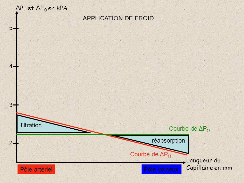 ΔPH et ΔPO en kPA APPLICATION DE FROID. 5. 4. 3. filtration. Courbe de ΔPO. réabsorption. 2.