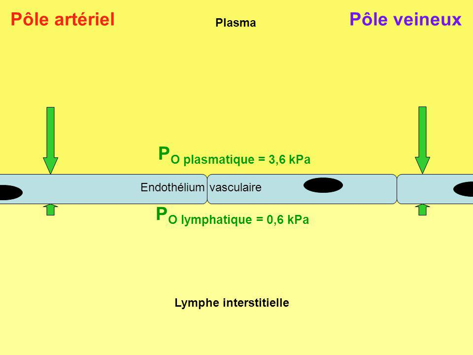 Lymphe interstitielle