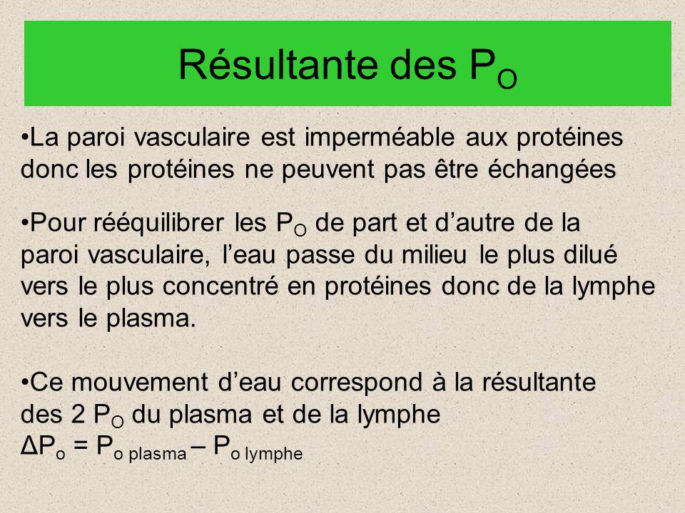 Résultante des PO La paroi vasculaire est imperméable aux protéines
