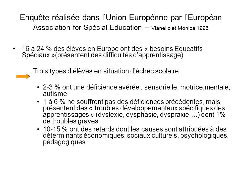 Enquête réalisée dans l'Union Europénne par l'Européan Association for Spécial Education – Vianello et Monica 1995