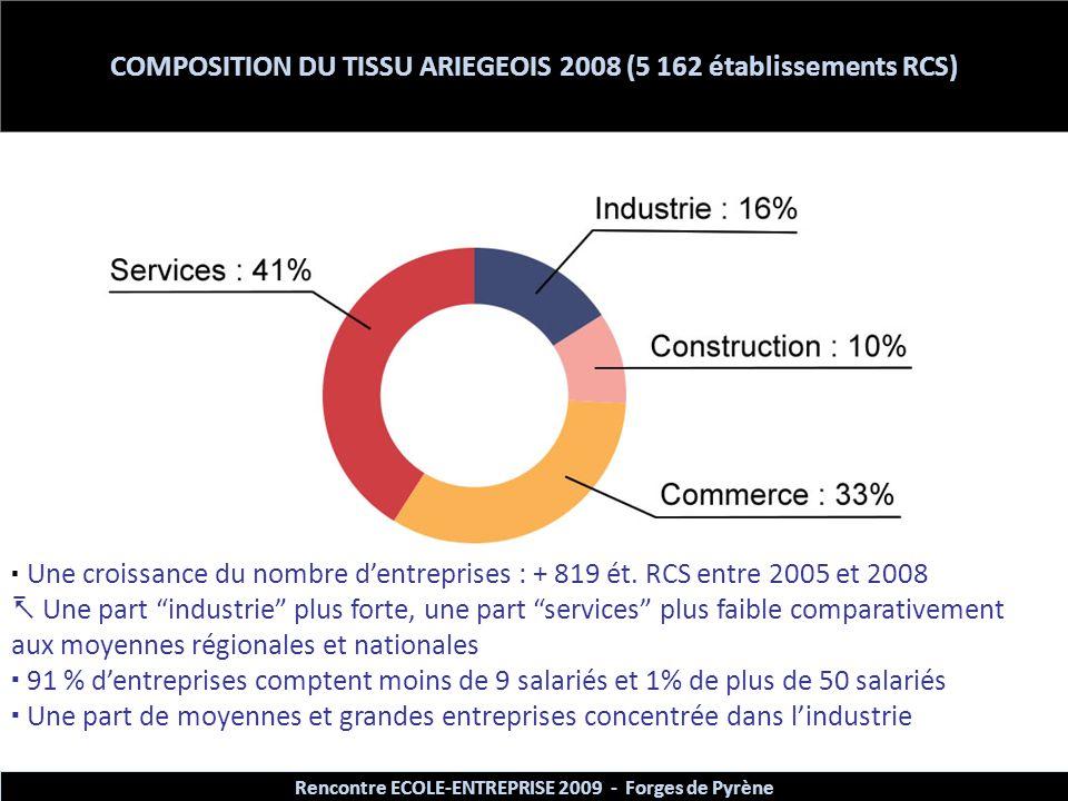 COMPOSITION DU TISSU ARIEGEOIS 2008 (5 162 établissements RCS)