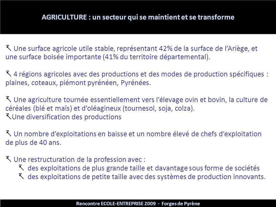 AGRICULTURE : un secteur qui se maintient et se transforme