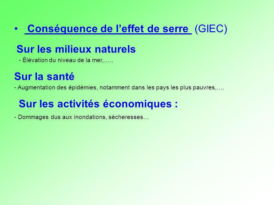 Conséquence de l'effet de serre (GIEC)