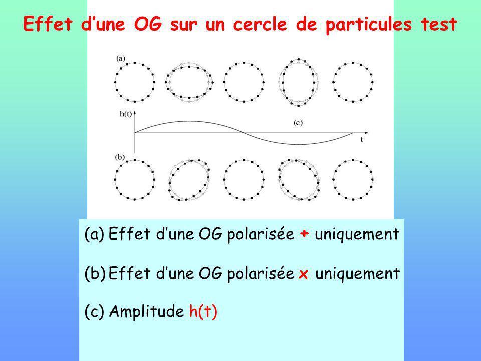 Effet d'une OG sur un cercle de particules test