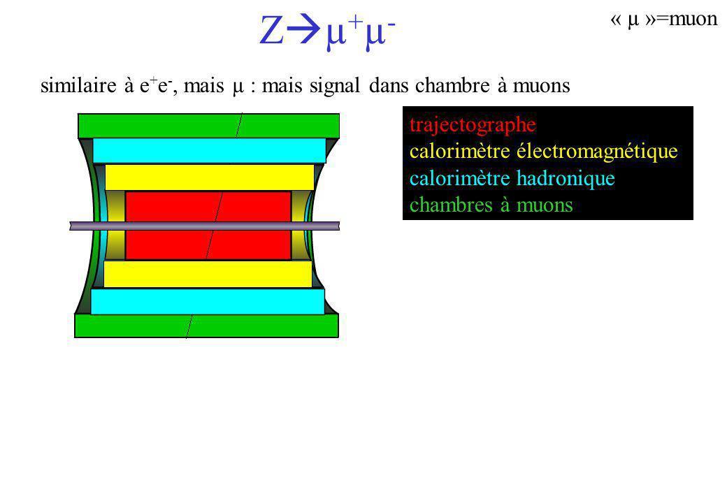 Zµ+µ- « µ »=muon. similaire à e+e-, mais µ : mais signal dans chambre à muons. trajectographe. calorimètre électromagnétique.
