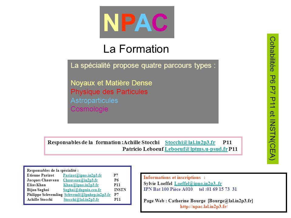NPAC La Formation La spécialité propose quatre parcours types :