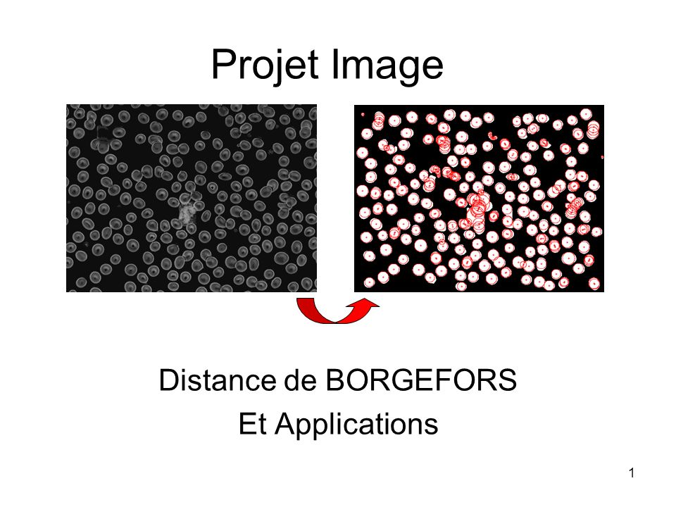Distance de BORGEFORS Et Applications