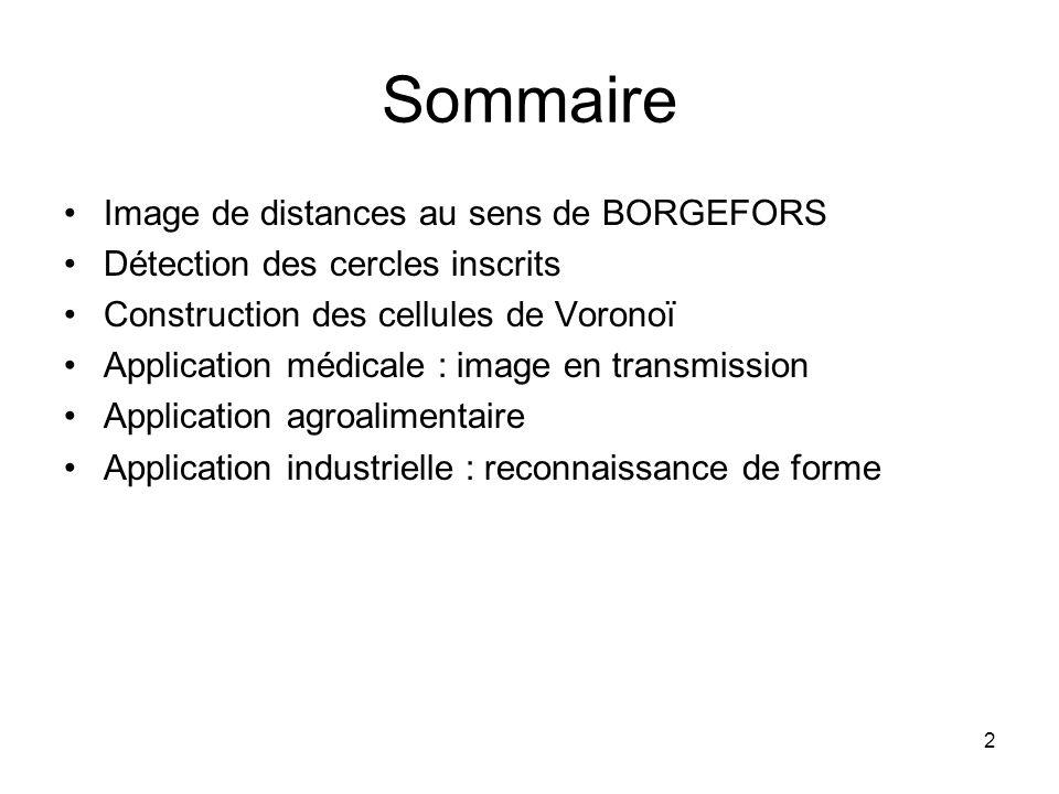 Sommaire Image de distances au sens de BORGEFORS