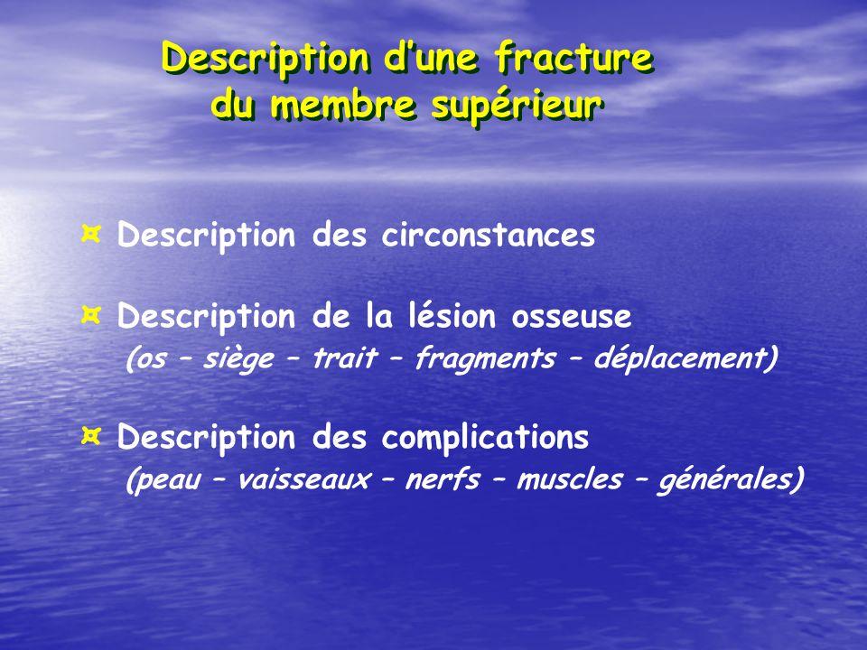 Description d'une fracture du membre supérieur