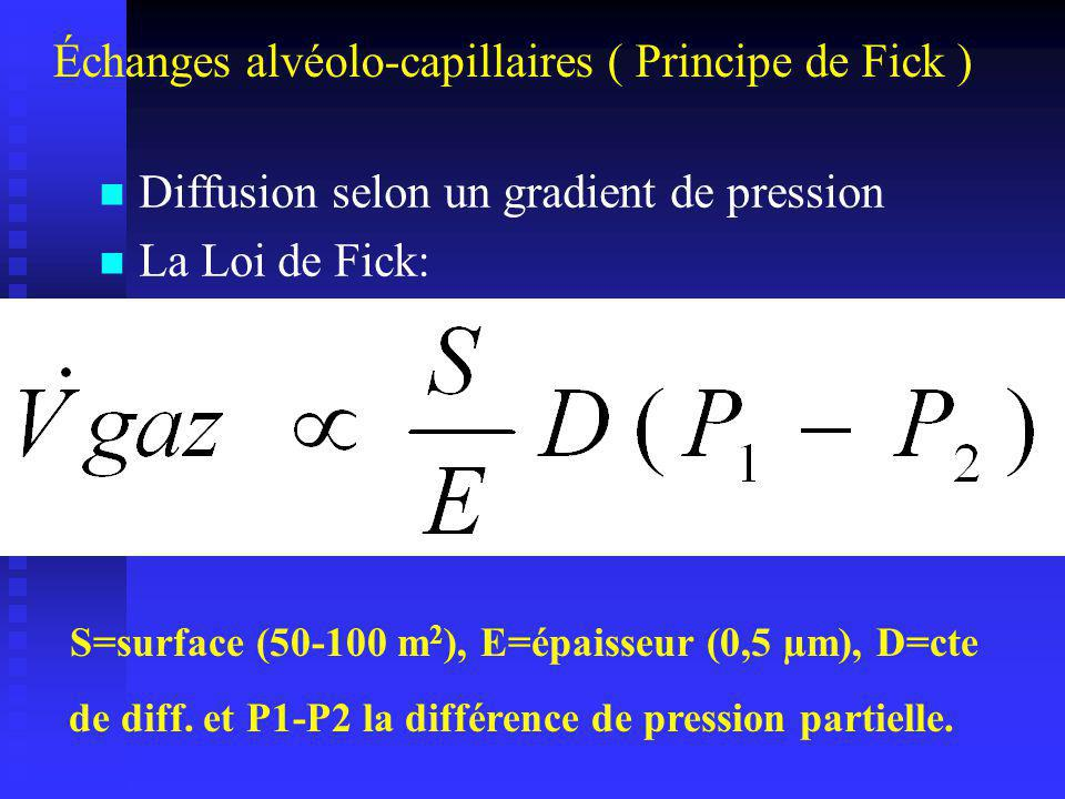 Échanges alvéolo-capillaires ( Principe de Fick )