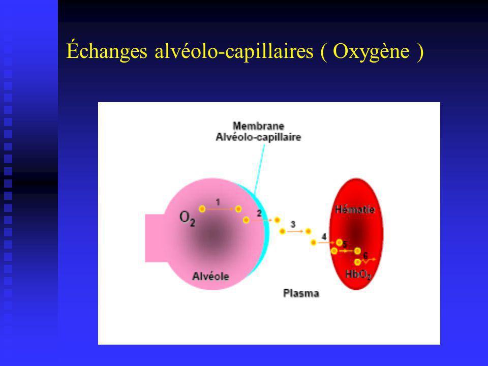 Échanges alvéolo-capillaires ( Oxygène )