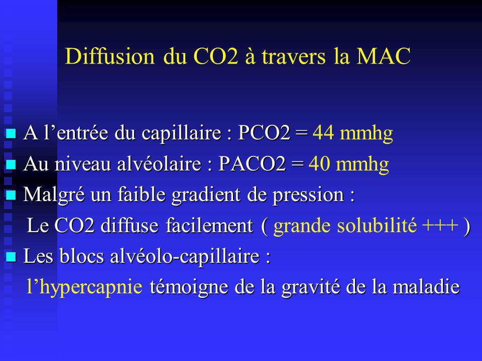 Diffusion du CO2 à travers la MAC
