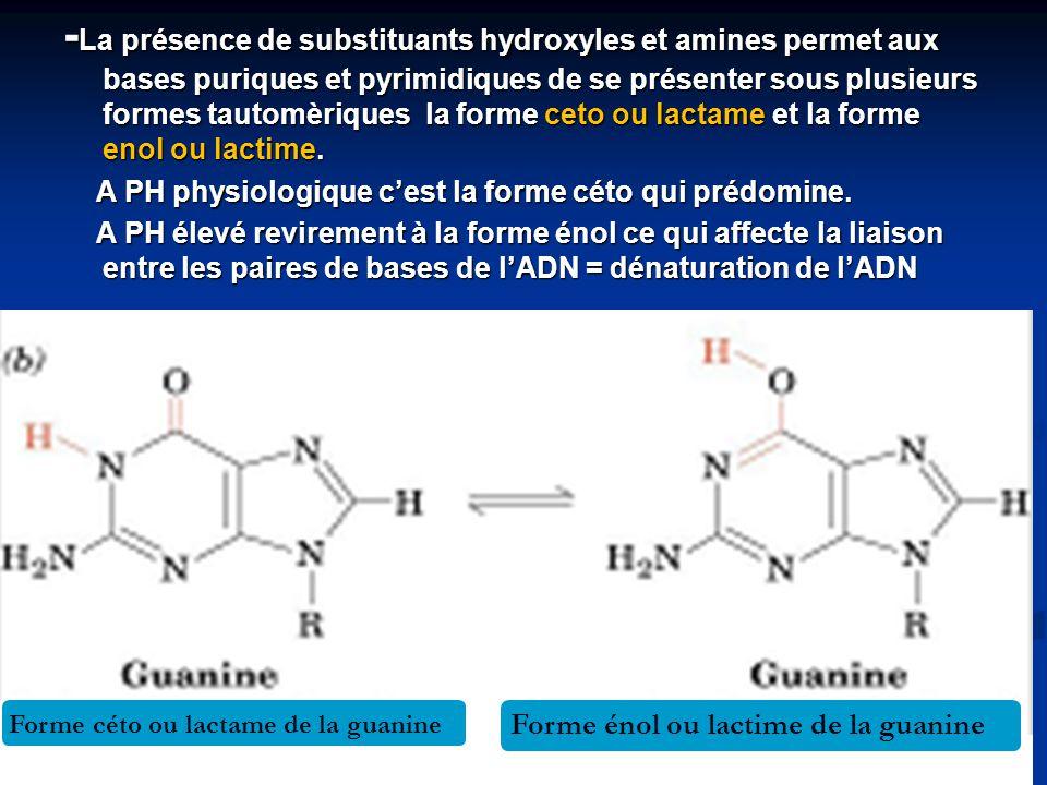 -La présence de substituants hydroxyles et amines permet aux bases puriques et pyrimidiques de se présenter sous plusieurs formes tautomèriques la forme ceto ou lactame et la forme enol ou lactime.
