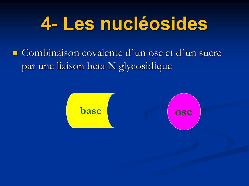4- Les nucléosides Combinaison covalente d`un ose et d`un sucre par une liaison beta N glycosidique.