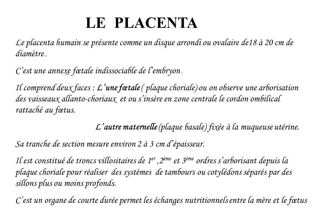 LE PLACENTA Le placenta humain se présente comme un disque arrondi ou ovalaire de18 à 20 cm de diamètre..