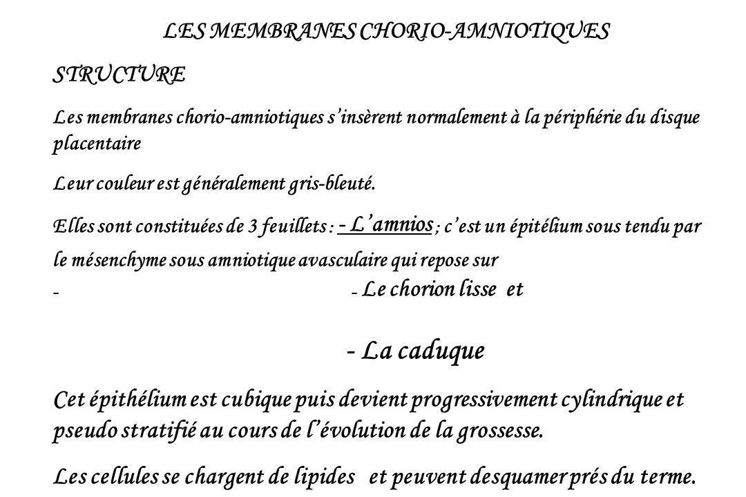 LES MEMBRANES CHORIO-AMNIOTIQUES STRUCTURE