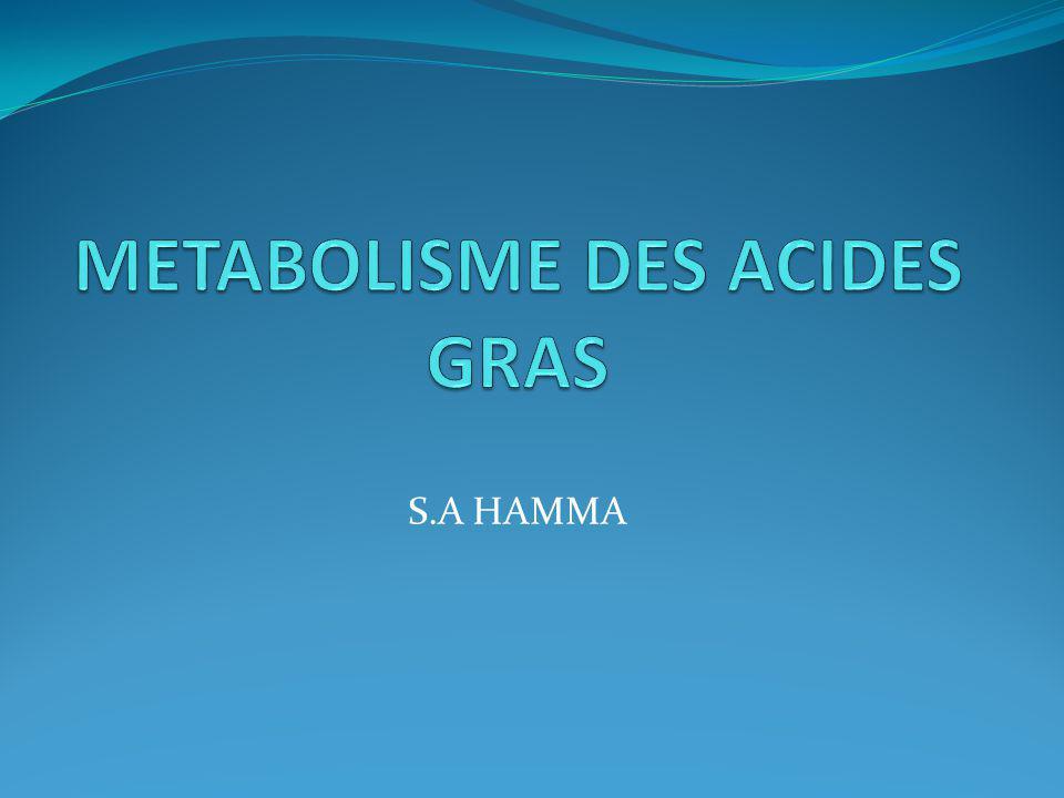 METABOLISME DES ACIDES GRAS