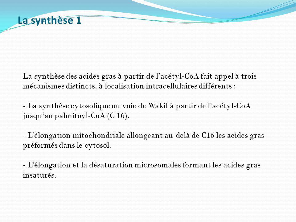 La synthèse 1