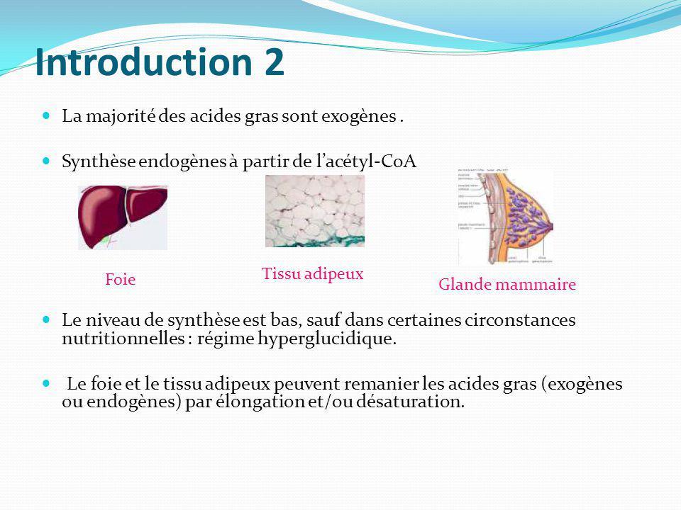 Introduction 2 La majorité des acides gras sont exogènes .