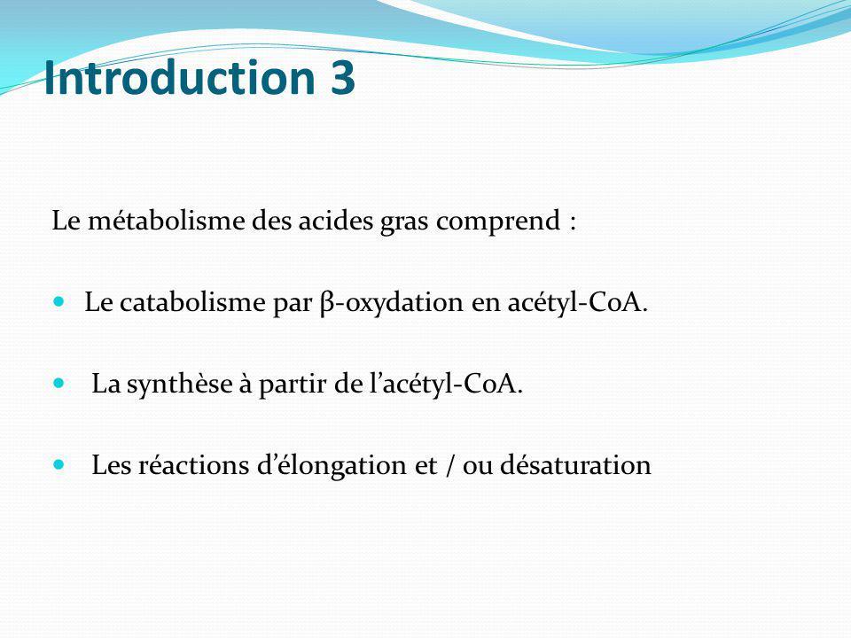 Introduction 3 Le métabolisme des acides gras comprend :