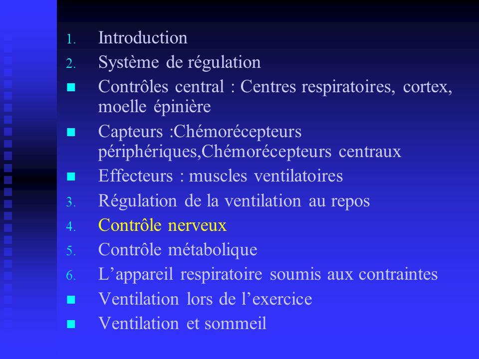 Introduction Système de régulation. Contrôles central : Centres respiratoires, cortex, moelle épinière.