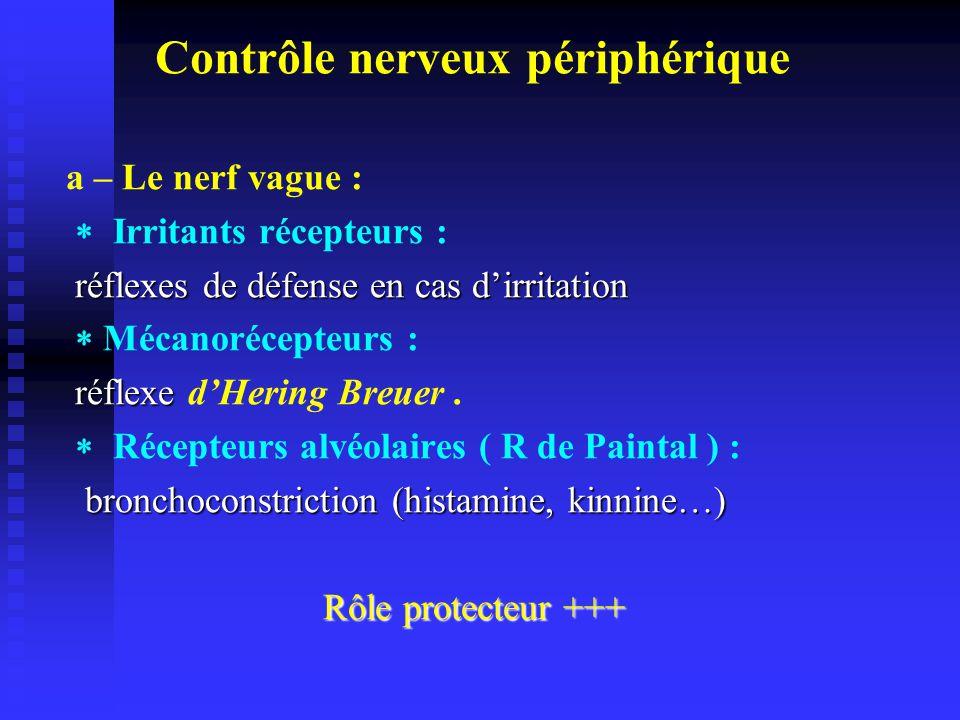 Contrôle nerveux périphérique