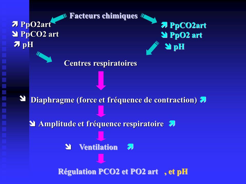 Facteurs chimiques  PpO2art.  PpCO2 art.  PpCO2art.  PpO2 art.  pH.  pH. Centres respiratoires.