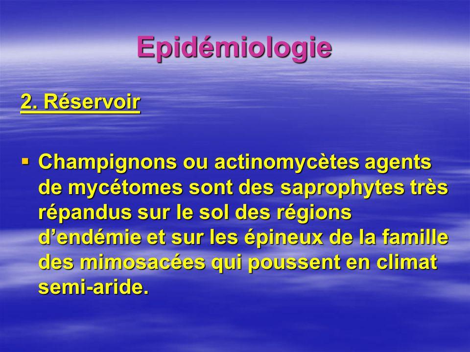 Epidémiologie 2. Réservoir