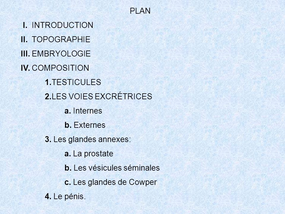 PLAN I. INTRODUCTION. II. TOPOGRAPHIE. III. EMBRYOLOGIE. IV. COMPOSITION. 1.TESTICULES. 2.LES VOIES EXCRÉTRICES.