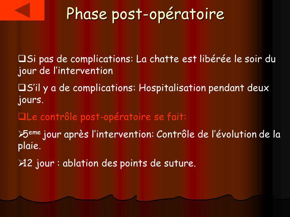 Phase post-opératoire